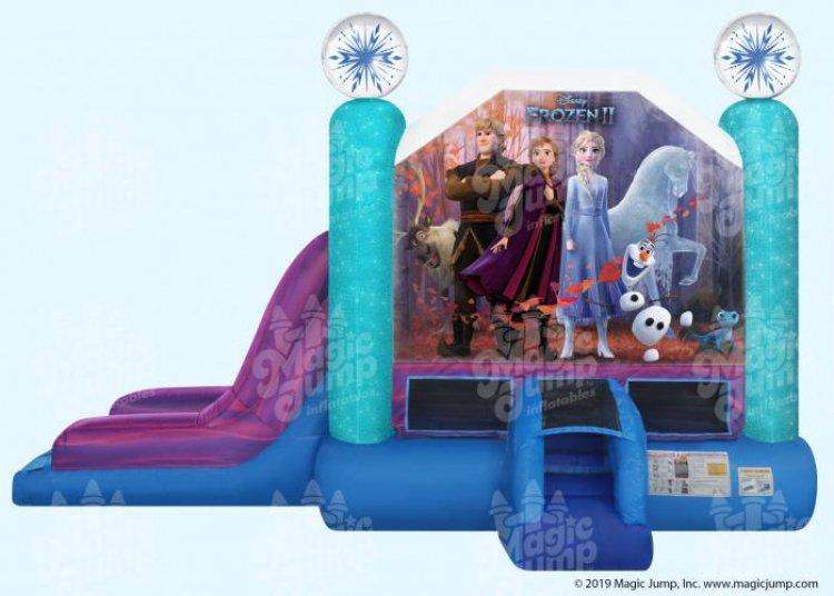 Frozen II Combo (Dry)