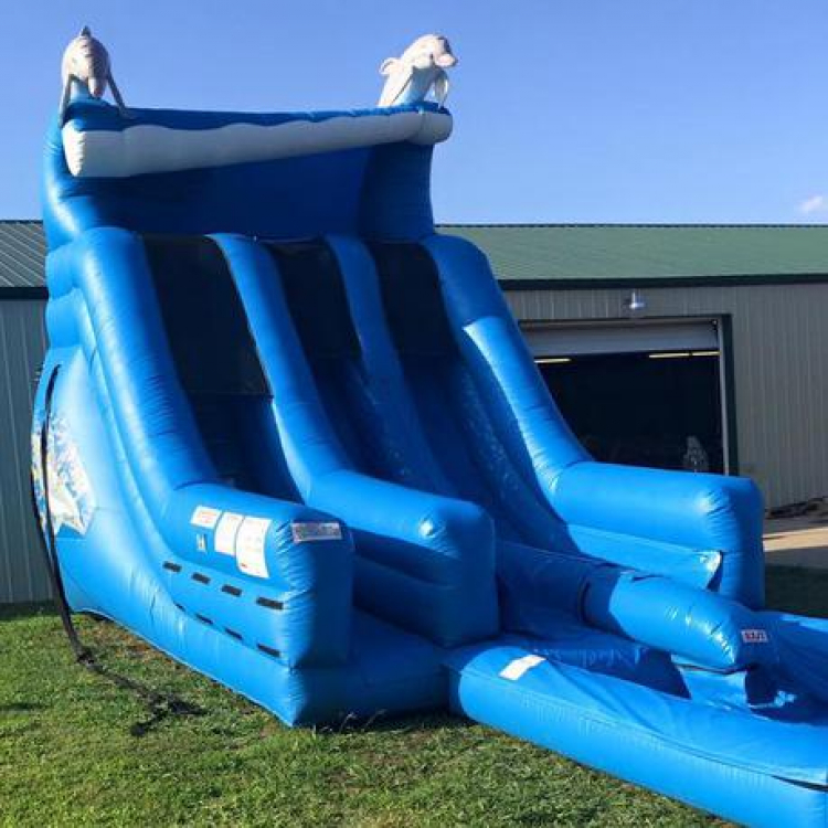 18ft Dolphin Wave Water Slide